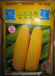 [忠興行]蔬菜水果種子---[超甜玉米-夏強] 1磅裝(450公克) 760元-全年皆可栽種