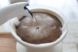 精品咖啡 衣索比亞 藝妓 咖啡豆 半磅裝