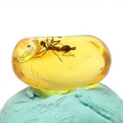 [真品] 0.9g 多明尼加 針蟻 昆蟲琥珀 / 蟲珀~~內包一隻6mm針蟻 (墨西哥 波羅的海可提問)