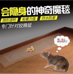 [透明 隱形]抓老鼠 大尺寸粘鼠板 黏鼠板 捕鼠陷阱 滅鼠魔毯