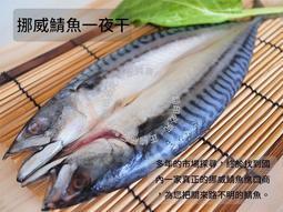 【正純商行】挪威鯖魚一夜干 $65一隻 實重260g左右 一夜乾 割烹等級 超低溫保鮮 真空包裝 中秋節 烤肉必備