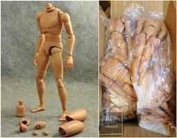 【神經玩具】現貨 CP值高 最新改版 4.0 ver 窄肩肉膚色素體 1/6 12吋人偶專用 美術骨架 人體 素描可用