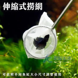 【AC草影】入門級 撈蝦/撈魚網(22~58cm)【一支】