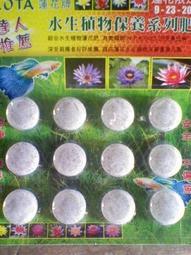 (艾水園藝)水生植物-蓮花肥~