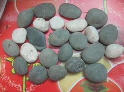【樂雜】╭☆30kg裝鋪路黑色白色大鵝卵石鵝暖石石頭++造景 健康步道 牆面 公園 園藝 庭院美化裝飾