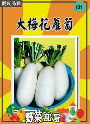 【野菜部屋~蔬菜種子】I01大梅花蘿蔔種子4.2公克(約600粒) , 極受好評 , 每包12元~