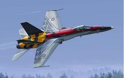2張超級漂亮貼紙 加拿大 F-18 大黃蜂戰機服役20週年紀念塗裝 附蝕刻片 #K48079