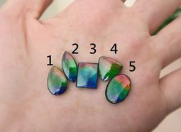*琹家*彩虹色 斑彩石(彩斑菊石、斑彩螺)裸石