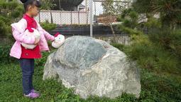 台灣墨玉 原礦 景觀石 庭園石
