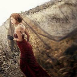 凡妮莎新娘頭紗-黑色素紗裸紗1.5米/光紗