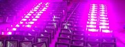 植物生長燈:LED燈大棚種植全光譜:防水投射燈